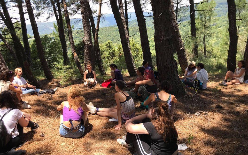 trekking_forest Pelion