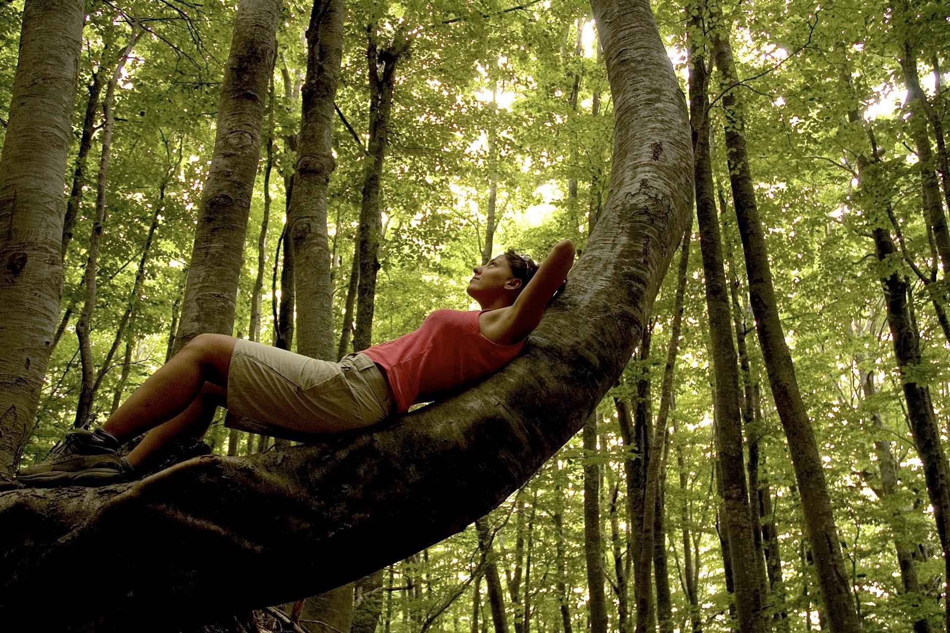 Nature Coaching in Pelion