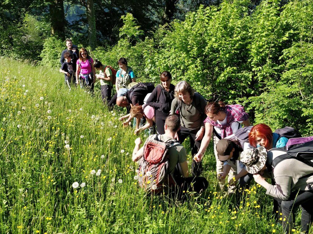 Forest Bathing & Nature Coaching Pelion