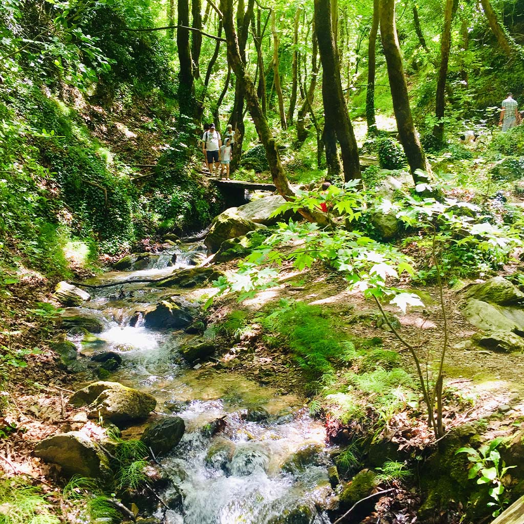 Pelion UpSoul Retreat hiking